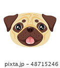 dog pet head icon 48715246