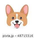 dog pet head icon 48715316