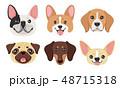 dog pet head icon 48715318