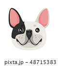 dog pet head icon 48715383