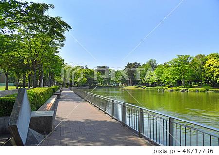 茨城県つくば市吾妻 つくば中央公園 48717736