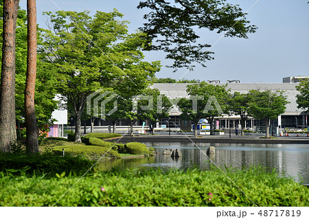 茨城県つくば市吾妻 つくば中央公園 48717819