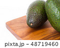 植物 食材 料理の写真 48719460