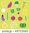 野菜 ベクター セットのイラスト 48722685