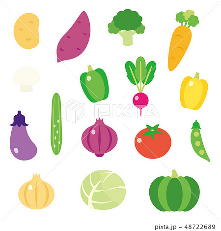 かわいい野菜のイラスト素材 48722689 Pixta