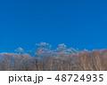 雪山 神楽ヶ峰付近 48724935