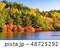 白駒の池 秋 紅葉の写真 48725292