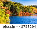 白駒の池 秋 紅葉の写真 48725294