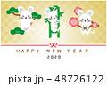 年賀状 年賀2020 鼠のイラスト 48726122