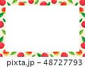 ベクター 果実 林檎のイラスト 48727793
