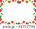 ベクター 果実 林檎のイラスト 48727794