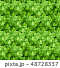 シャムロック アイリッシュ クローバーのイラスト 48728337