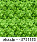 シャムロック アイリッシュ クローバーのイラスト 48728353