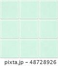 タイル グリーン タイル貼りのイラスト 48728926