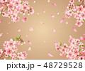 桜 花 春のイラスト 48729528