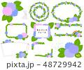 フレーム 枠 花のイラスト 48729942