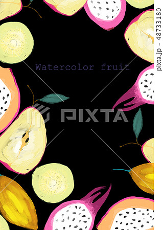 透明水彩 水彩画 フルーツ 48733180