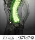 48734742