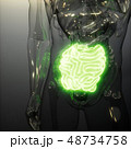 48734758