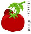 トマト 赤い ベジタブルのイラスト 48768714