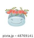 動物 キャラクター 文字のイラスト 48769141