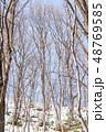 積雪 森林 冬の写真 48769585