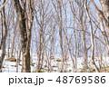 積雪 森林 冬の写真 48769586