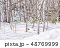 冬 森林 枯れ木の写真 48769999