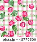 くだもの フルーツ 実のイラスト 48770600
