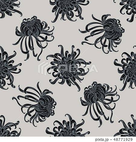 Seamless pattern with hand drawn stylized japanese chrysanthemum 48771929