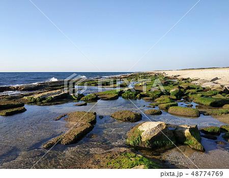 Bustan HaGalil sandy beach with rocks near Acre Haifa Israel. Akko seashore Mediterranean sea. Clear 48774769