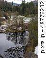 公園 樹木 樹の写真 48776232