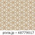 ジャパニーズ 日本人 日本語のイラスト 48779017