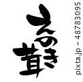 筆文字 えのき茸 食べ物 イラスト 48783095