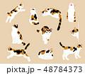 猫のイラストセット 48784373