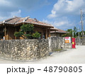 沖縄 離島 八重山 竹富島 おきなわ 南国 日本 観光地 景色 スローな島 自然豊か 琉球  48790805