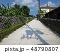 沖縄 離島 八重山 竹富島 おきなわ 南国 日本 観光地 景色 スローな島 自然豊か 琉球  48790807
