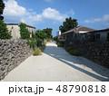 沖縄 離島 八重山 竹富島 おきなわ 南国 日本 観光地 景色 スローな島 自然豊か 琉球  48790818