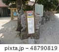 沖縄 離島 八重山 竹富島 おきなわ 南国 日本 観光地 景色 スローな島 自然豊か 琉球  48790819