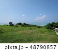 沖縄 八重山 波照間島 離島 自然 緑 海 景色 南国 南の島 有人島 夏 48790857