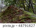 苔の生えた土 48791627