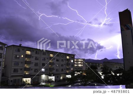 Thunder 雷 48793801