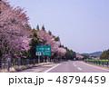 秋田県 鹿角市 桜の東北自動車道 もうすぐ十和田 大館 48794459