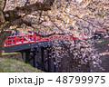 青森 弘前城の桜 赤い橋 下乗橋 48799975