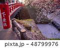 青森 弘前城の花筏 お濠に浮かんだ桜の花びら 赤い橋 下乗橋 48799976