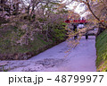 青森 弘前城の花筏 お濠に浮かんだ桜の花びら 赤い橋 下乗橋 48799977