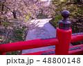 青森 弘前城の花筏 お濠に浮かんだ桜の花びら 赤い橋 下乗橋 48800148