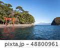 静岡県沼津市の西伊豆、戸田港の諸口神社鳥居と彼方に富士山を望む 48800961