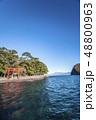 静岡県沼津市の西伊豆、戸田港の諸口神社鳥居と彼方に富士山を望む 48800963