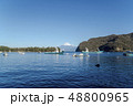 静岡県沼津市の西伊豆、戸田港から駿河湾越しに望む冬の富士山 48800965